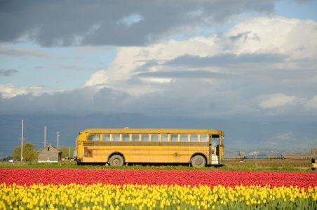 Il trasporto scolastico dei disabili in Valle d'Aosta diventa gratuito