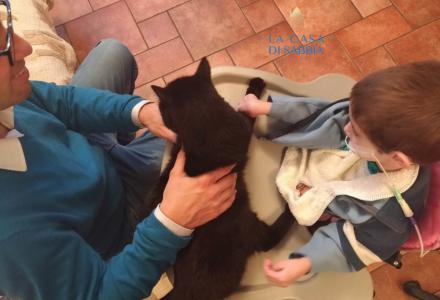Assistenza domiciliare per un bambino disabile grave